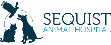 Logo for Veterinarians Morrisville | Sequist Animal Hospital